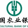 Agricultural Bank of China Limited